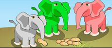 Play Elephant Feed