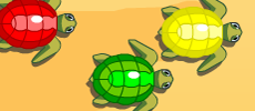 Play Turtle Dash